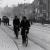 Πώς οι Ολλανδοί απέκτησαν τους ποδηλατόδρομους