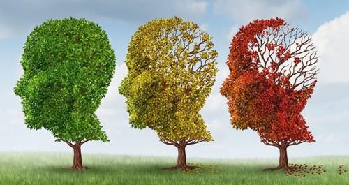 Υπάρχει ένας τρόπος να κρατήσουμε το μυαλό για πάντα νέο